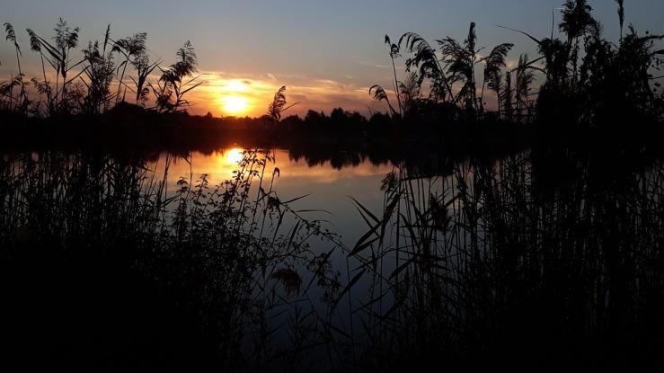 lake-3877415_960_720